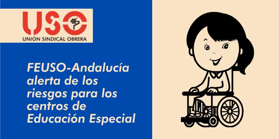 FEUSO-Andalucía denuncia que la nueva ley educativa pone en riesgo los centros de Educación Especial