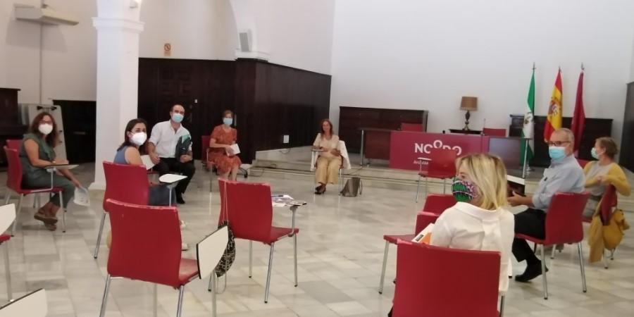 USO-Andalucía, en la reunión de trabajo de la Mesa de Empleo del OPIS. Sindicato USO-Andalucía