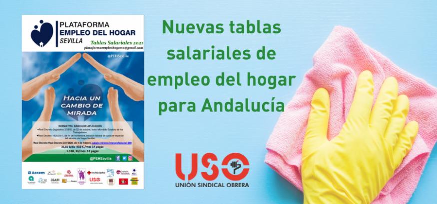 Tablas del empleo de hogar de la Plataforma de Sevilla, con la participación de USO-Andalucía