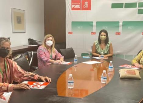 FEUSO se reúne con el PSOE y le traslada la necesidad de reducir la ratio escolar